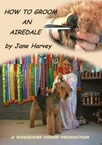 How to Groom an Airedale