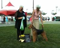 Jane with Winning Airedale