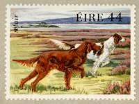 Irish and Irish Red and White Setter Stamp 1983