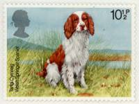 Welsh Springer Spaniel Postage Stamp UK 1979