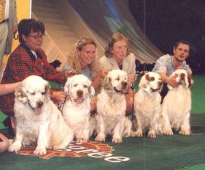 A Breeders' Group of Clumber Spaniels