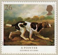 Spanish Pointer c 1775