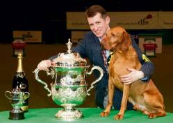 Hungarian Vizsla wins Crufts 2010