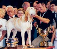 World Dog Show 2000, Milan