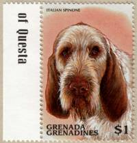 Spinone Stamp