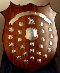 Eileen O'Connor Shield Original