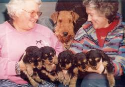 Myself, 'Rosie', Marg with the 5 pups