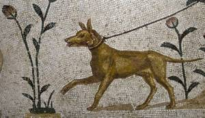 Ancient Greek Companion Dog