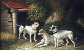 Bulldogs Early Painting