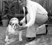 Wes Stacey with Bulldog