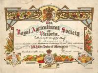 Dog Exhibitor Certificate Royal Melbourne Show 1934