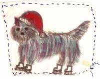 Cairn Terrier on skates