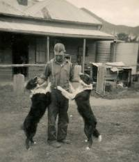 High Country working dogs 1930