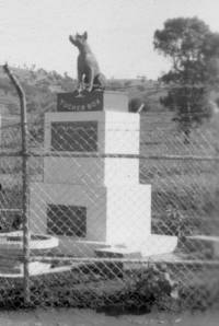 Dog on the Tucker-box 1953