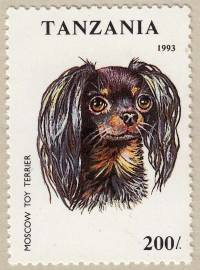 Moscow Toy Terrier postage stamp 1993