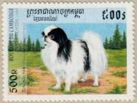 Japanese Chin Stamp