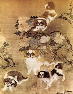 Imperial Chinese dogs c 1750