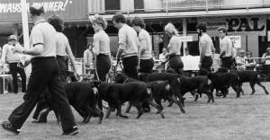 Rottweiler Club Demonstration Team