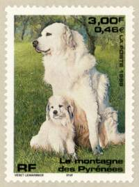 Pyrenean Mountain Dog Stamp