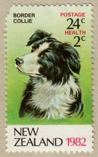 Border Collie NZ Stamp